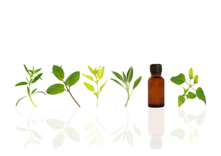 essential oil leaves
