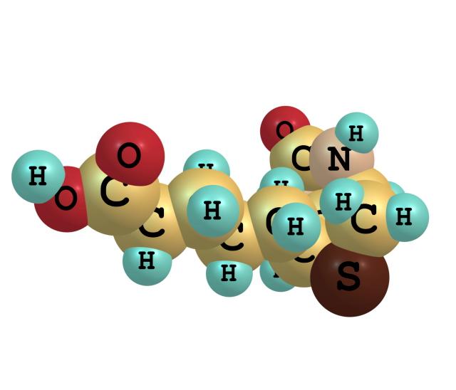 biotin b7 molecules