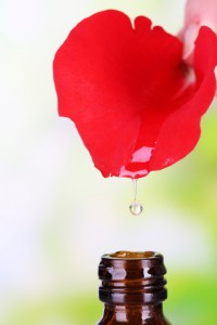 oil from rose petal