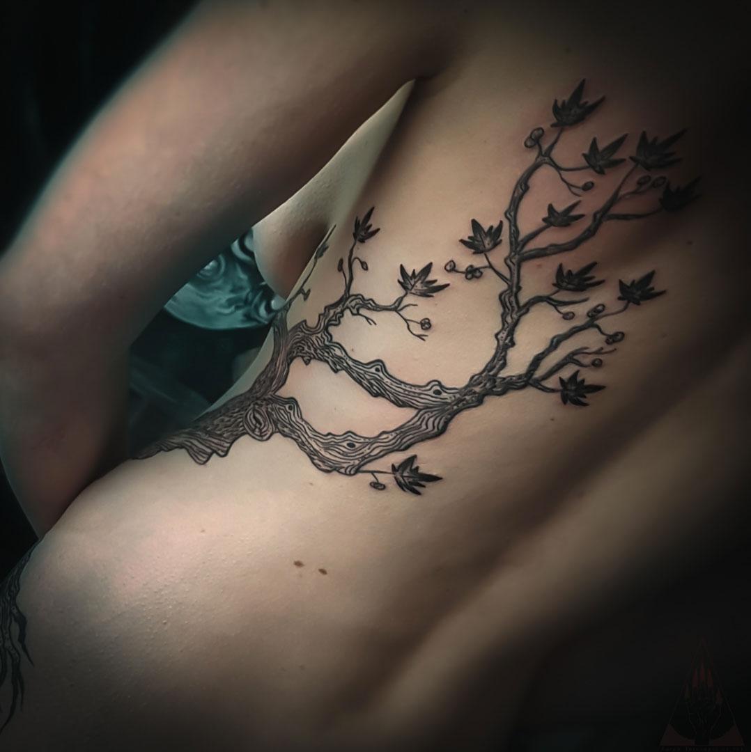 zarpa_arbre