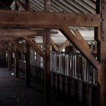The interior timber frame of an abandoned barn