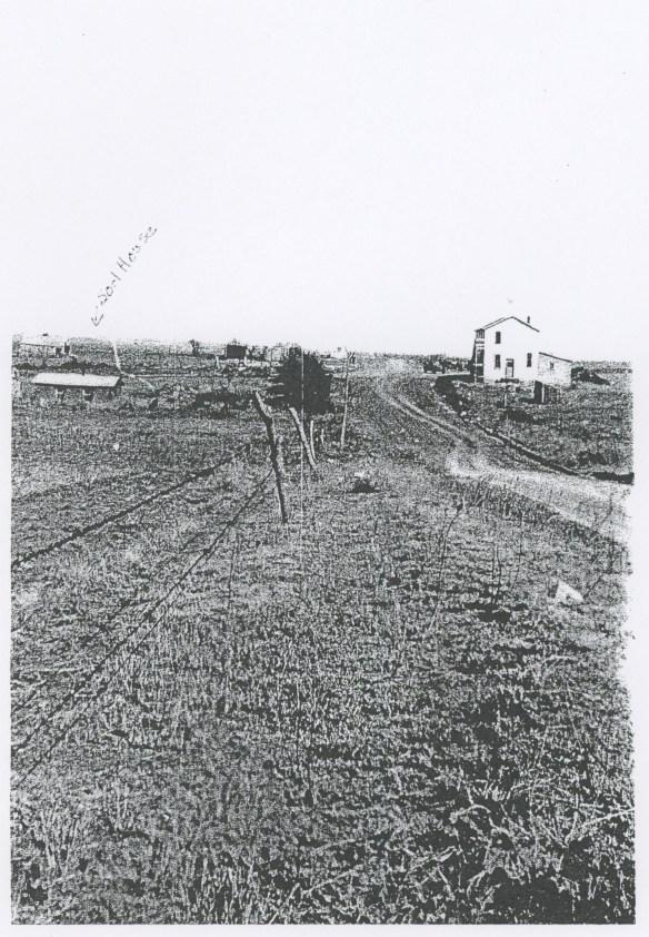 Sod house vista