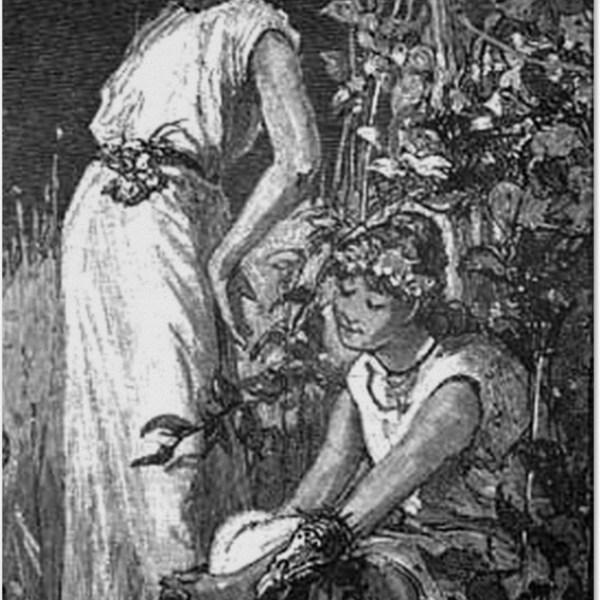 Black Fairies Poster