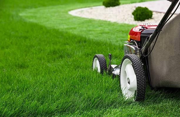 lawn mower black friday deals