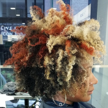 kara anderson funky colored twist out