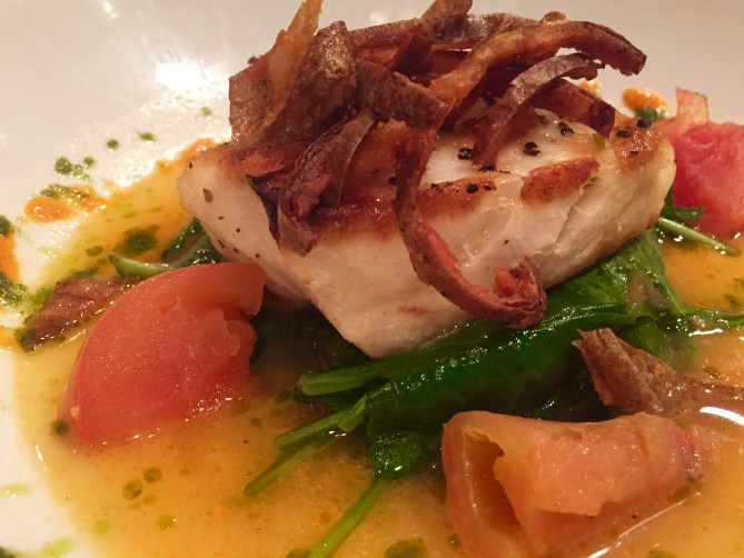 Chilean sea bass on a bed of wilted greens.
