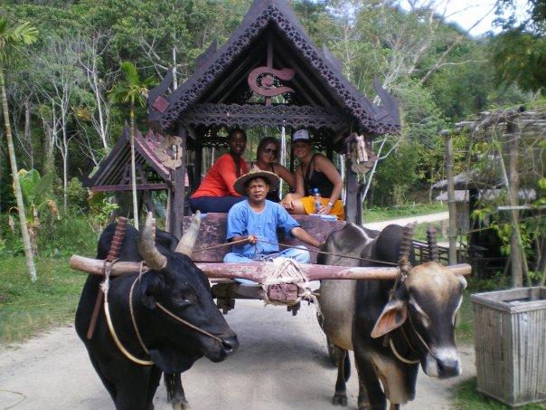 Thai Farm Life