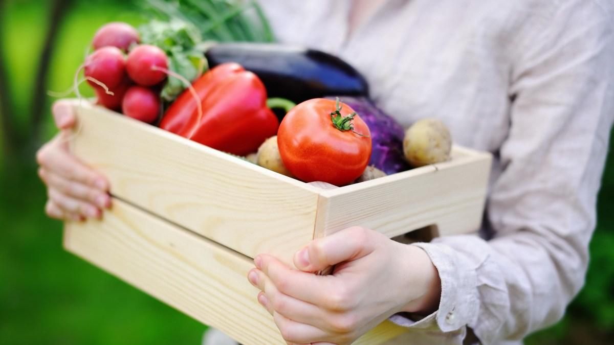 Black Gram – Great for the Vegetarian Diet