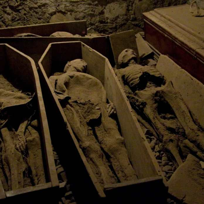 looted mummy tomb