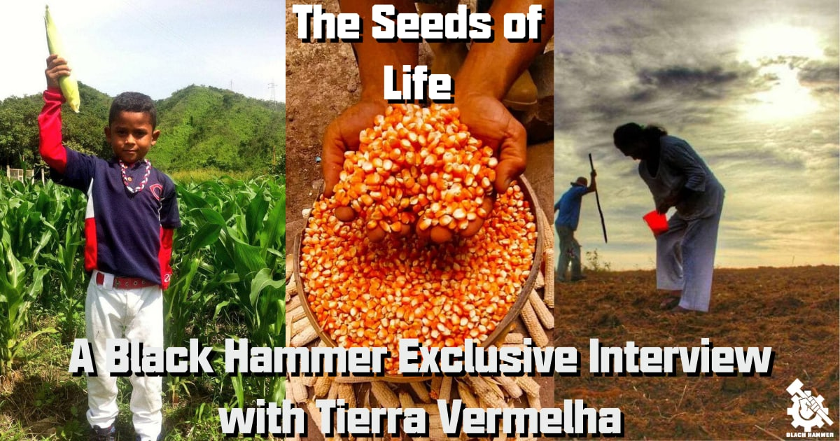 The Seeds of Life: Exclusive Interview