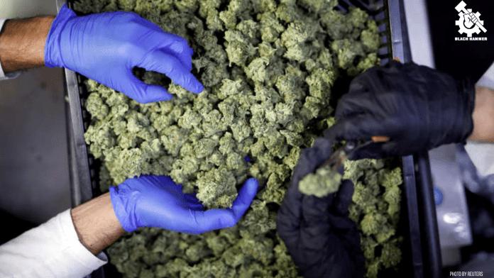 Weed from the illegal colony isn'treal (israeli) company Pharmocann