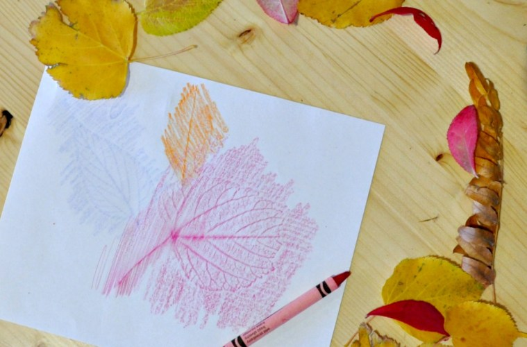 Leaf Coloring Crayon