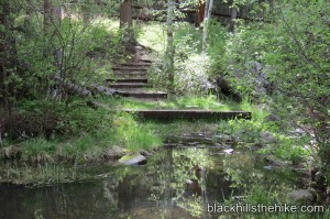 Willow Creek Stream SD
