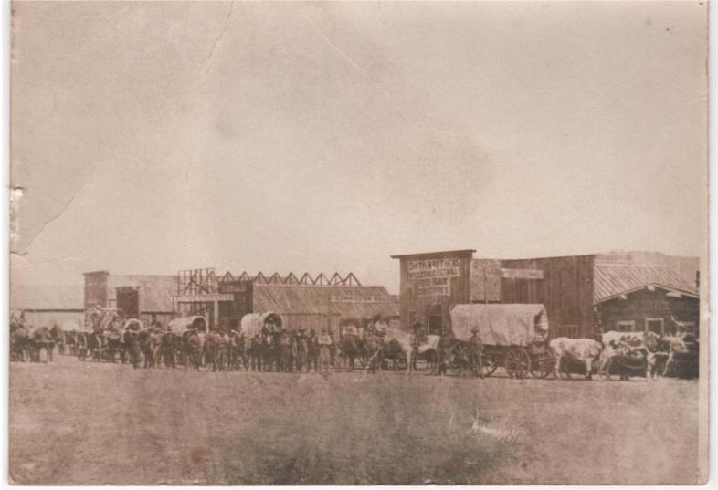 Freight Team entering Custer, SD in 1876 from Daniel S. Mitchell
