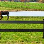 Black Vinyl Horse Fencing Black Vinyl Ranch Rail Fencing Blackline Hhp