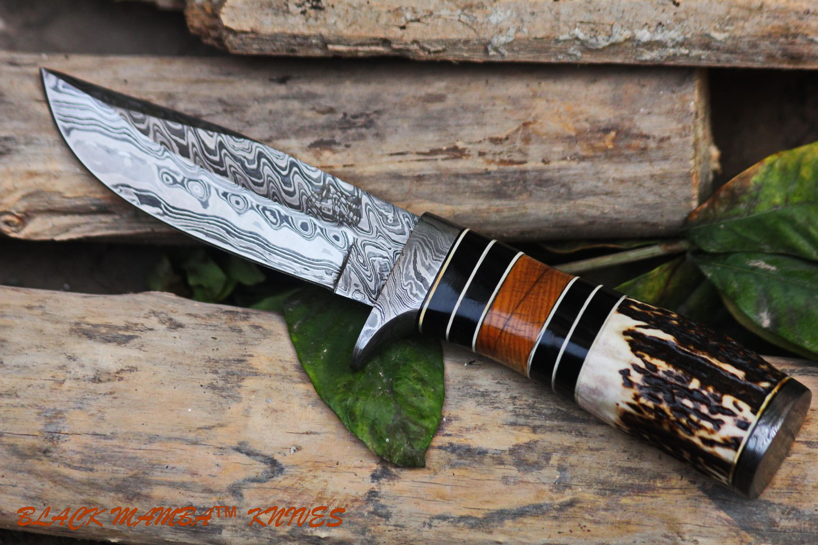 BMK-103 Bobcat damascus knives handmade knives by black mamba usa