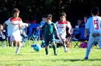 Black Oaks Youth Soccer Club - Santa Rosa, California