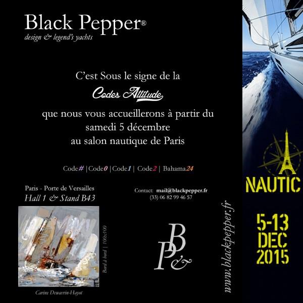 Salon Nautique 2015