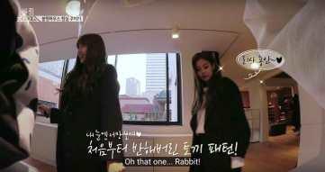 Lisa-love-rabbit-pattern-3