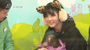 Blackpink Jisoo with Bangs and monkey everland