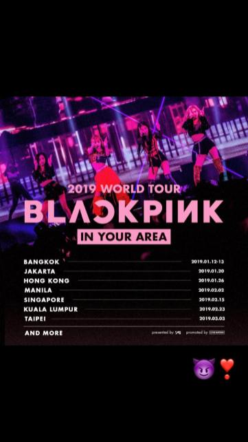 BLACKPINK Jisoo Instagram Story 1 November 2018 World Tour