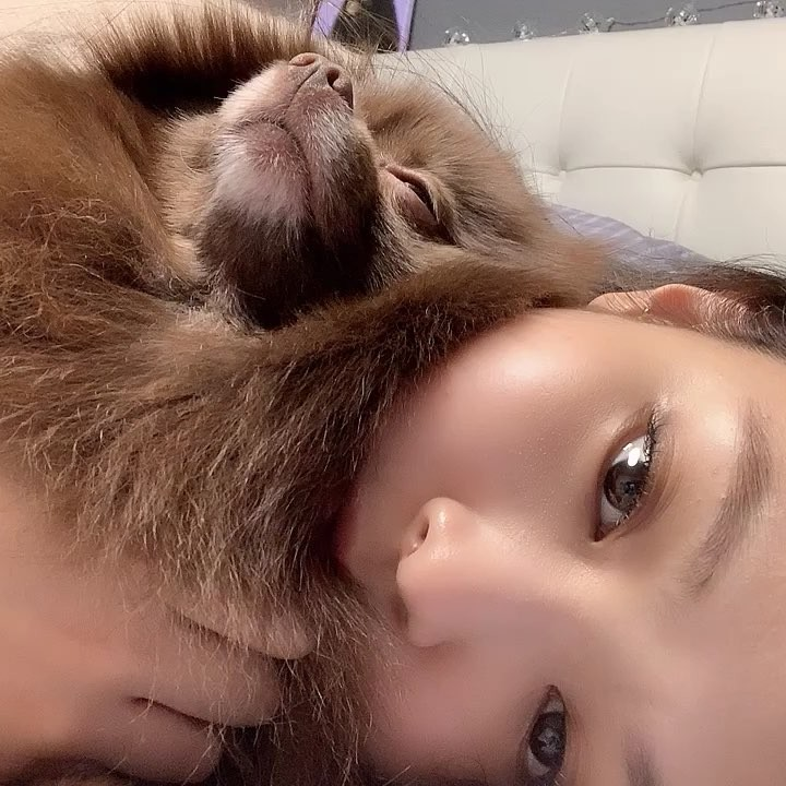 12-BLACKPINK Jennie Kuma Instagram Photo 27 December 2018