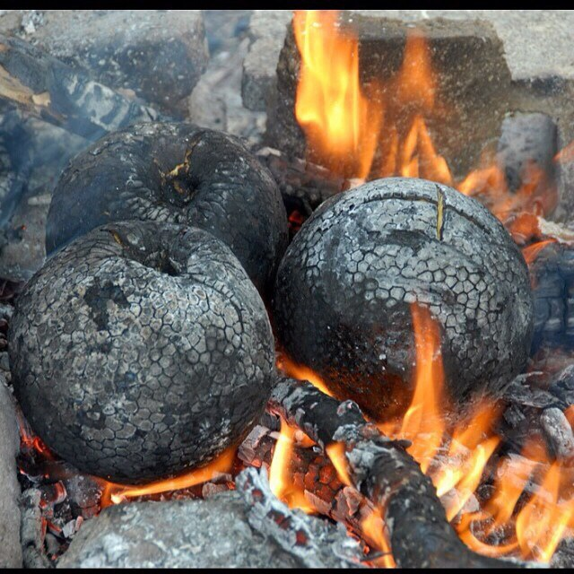 roasted breadfruit2