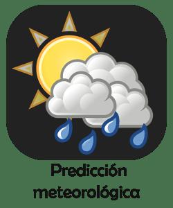 predicion  .fw