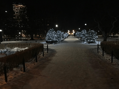 snow walking the Boston Public Garden