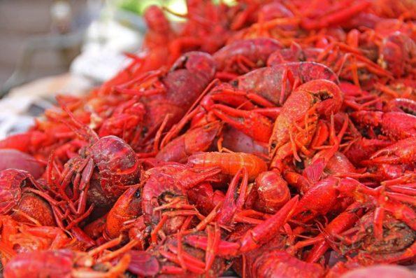 Louisiana-Mud-Bugs-Crawfish-South-Food-New-Orleans-169694-595x397 Black Southern Belle Travel: Three South Louisiana Treasures