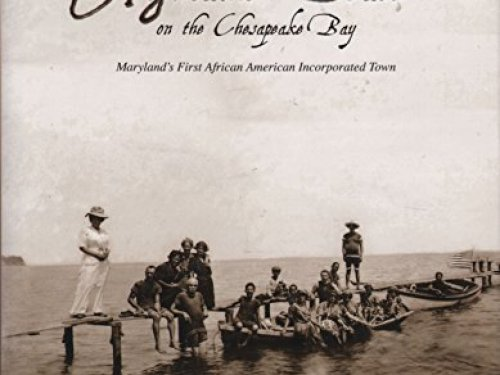 African_American_Beach_Books_3-500x375 BSB Latest Stories