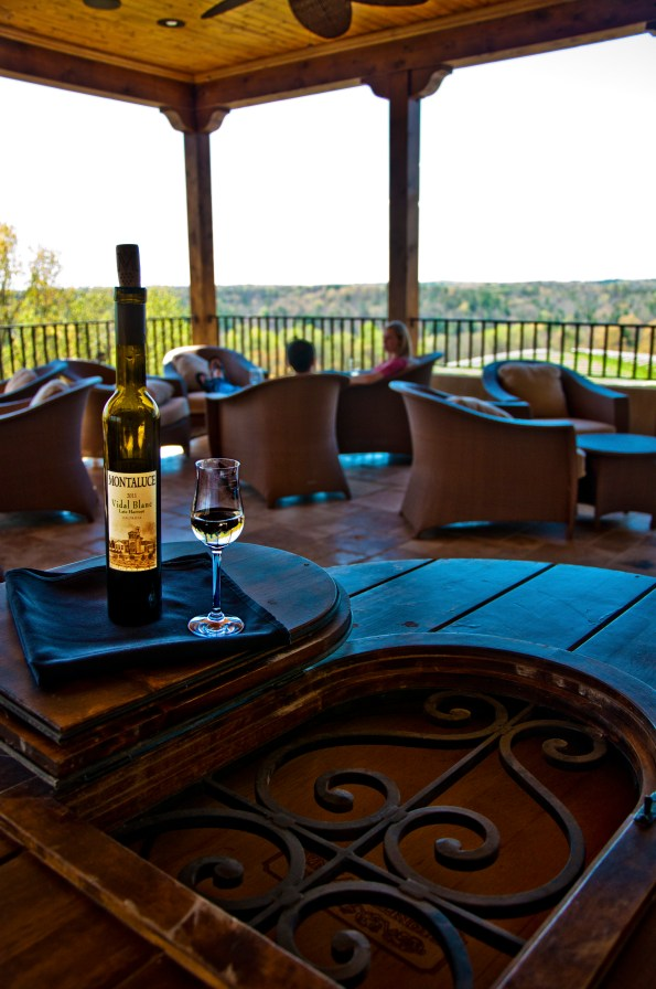 Montaluce-Winery-view-595x896 Wineries in Dahlonega, GA That You Must Try