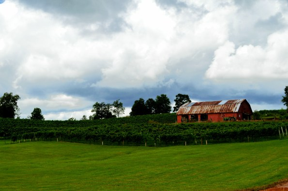 ThreeSistersvineyards2-595x395 Wineries in Dahlonega, GA That You Must Try