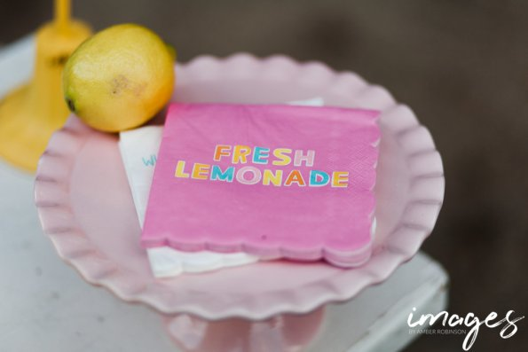 IMG_0351-595x397 Lemonade Stand Inspiration - Summer Fun