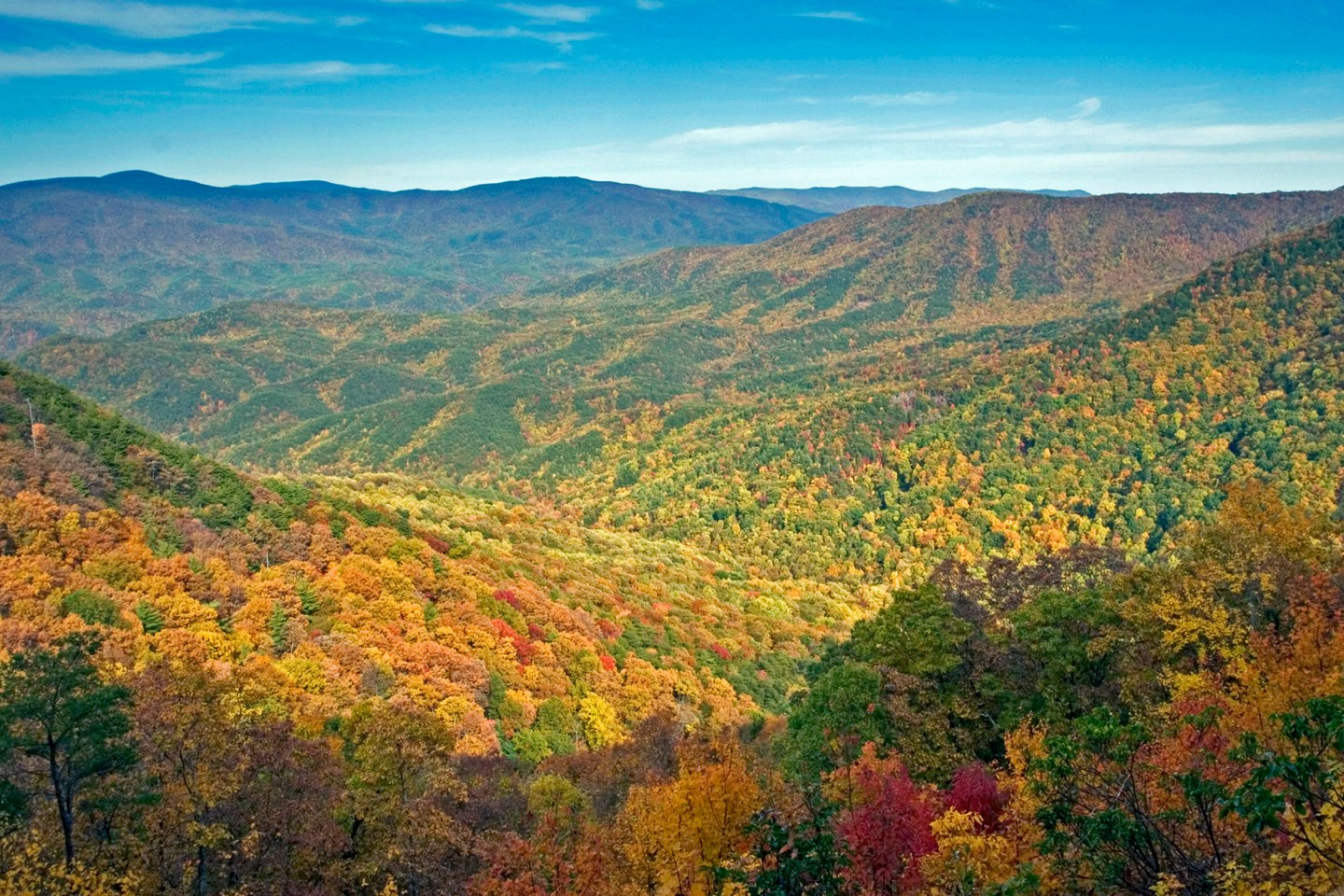 Vogel-Overlook BSB Travel:  Top Ten Georgia State Parks for Fall Color