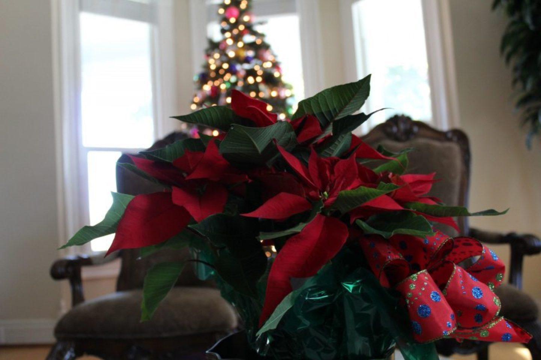 IMG_0155-1440x960 HBCU Holiday House: Wiley College Christmas Decor Tour