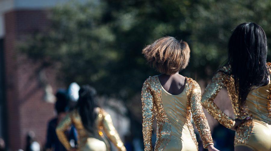 DSC_9861 Images of Meridian, MS MLK Parade We Love