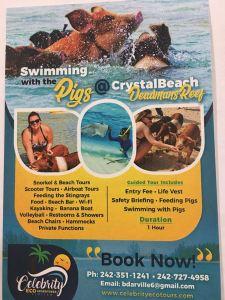 Celebrity Ecotours's flyer!