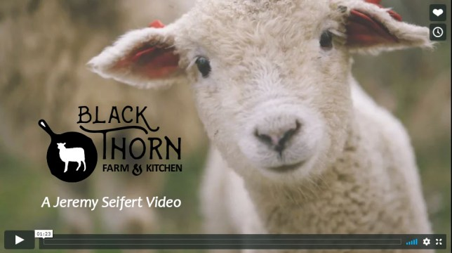 Black Thorn Farm & Kitchen Video by Jeremy Seifert