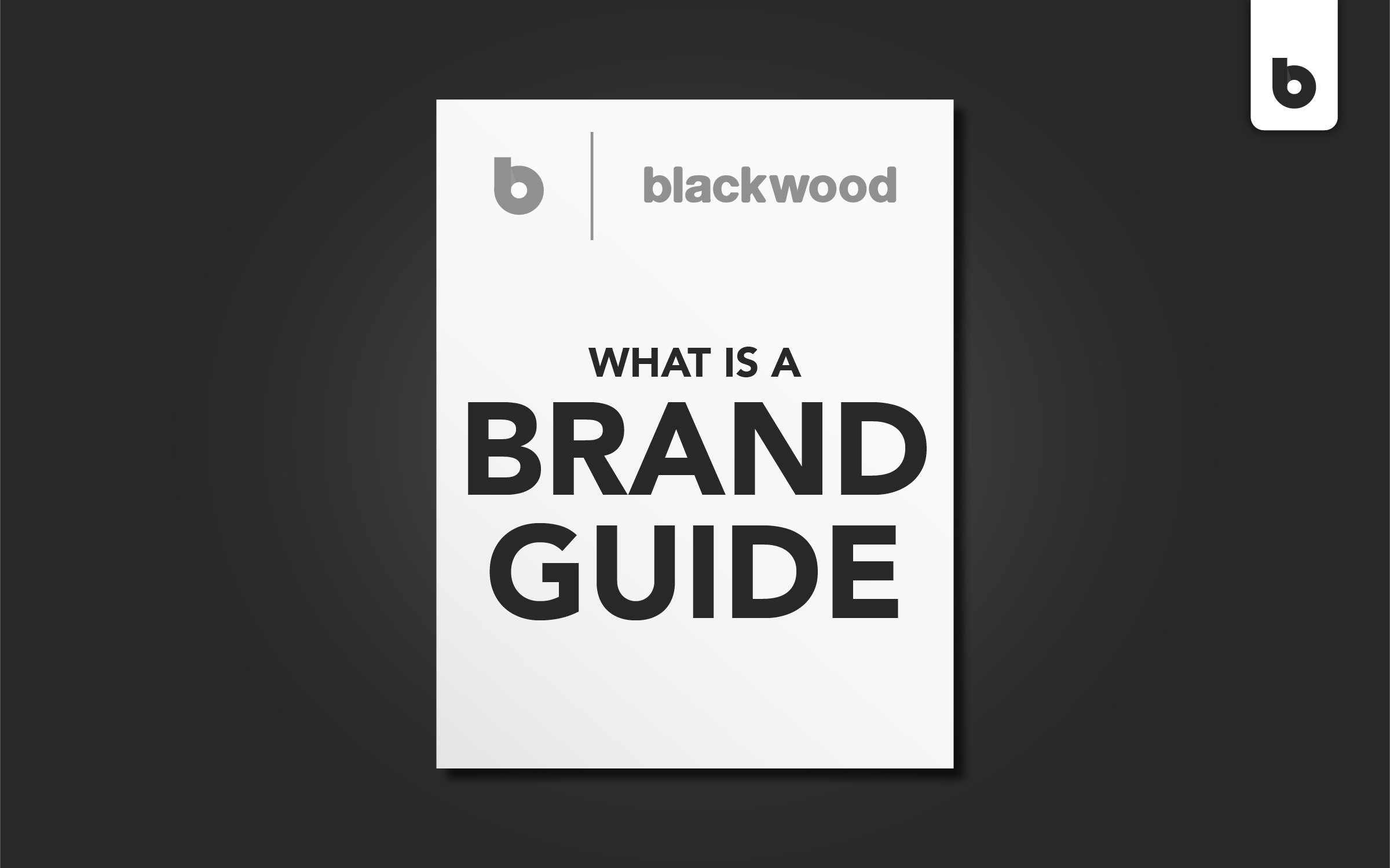 what is a brand guide and why do you need it
