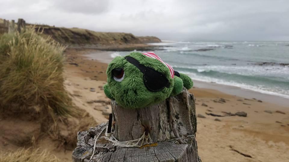 Blacky begleitet mich seit einigen Jahren an meine Reisen ans Meer