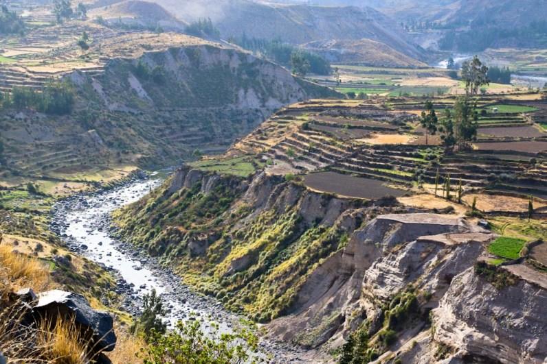 Colca-Canyon-Terrassen_1