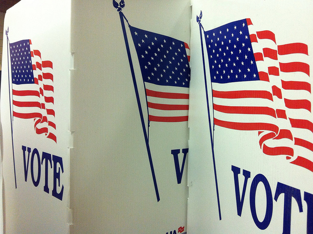 Flickr, voter id