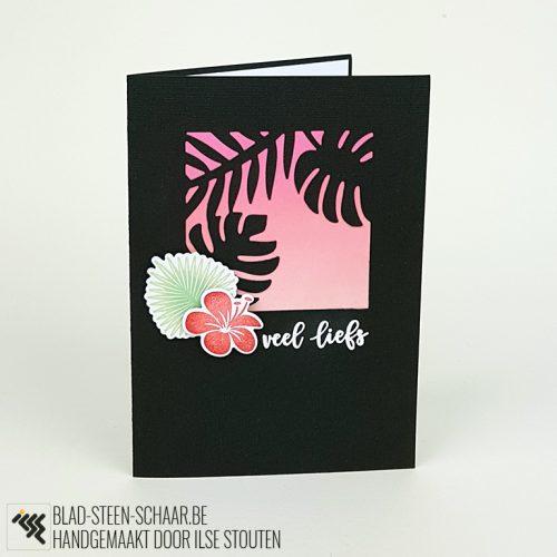 Stouten | SU Tropical Chic | blad-steen-schaar.be