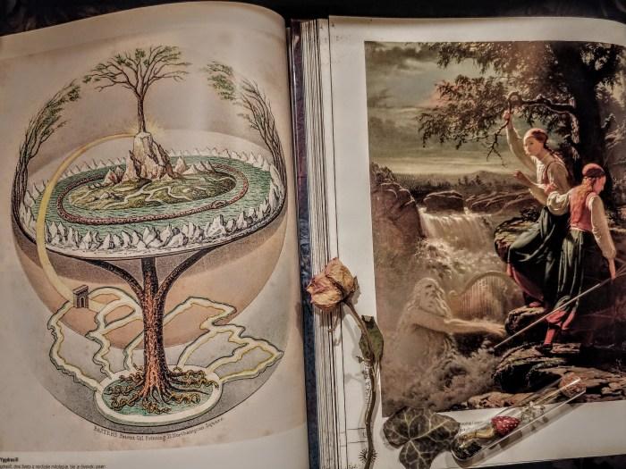 Od najmanjeg korijena do krošnje i zlatne grane, drveće veže zemaljske svjetove s božanskim i svaka vrsta ima posebnu namjenu