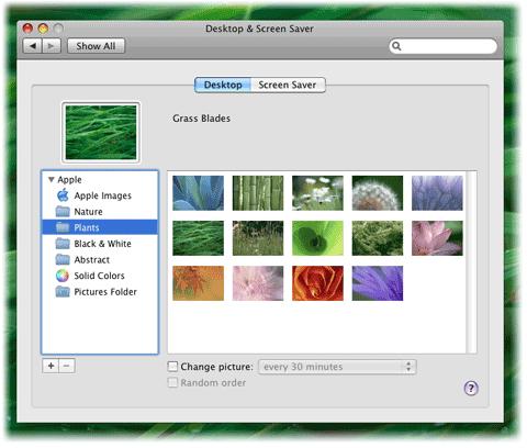 Change Desktop Background {Making the Mundane Marvelous} | Blair Blogs