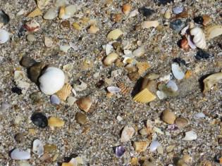 Pawleys Island | Blair Blogs