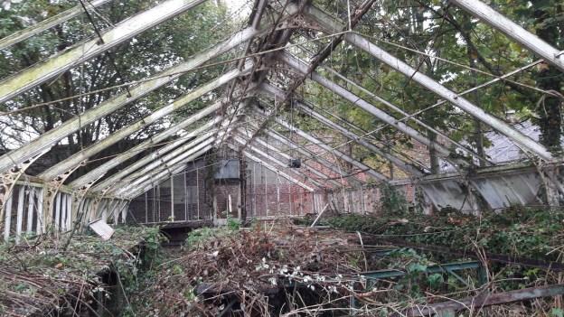 Greenhouse 5 Progress – October 2017