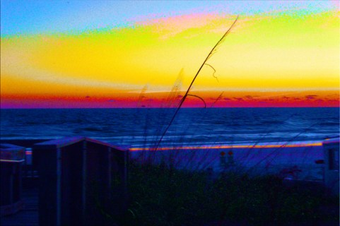 Coastal Tropical Landscape Dawn of a New Day Abstract Sky