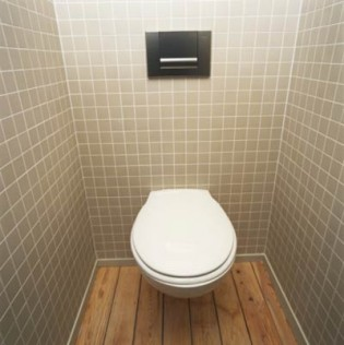 My Own Private Toilet Room Archives Blake Snow